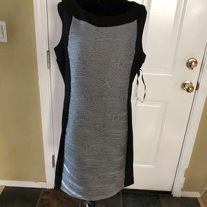 Black and Gray Calvin Klein Dress